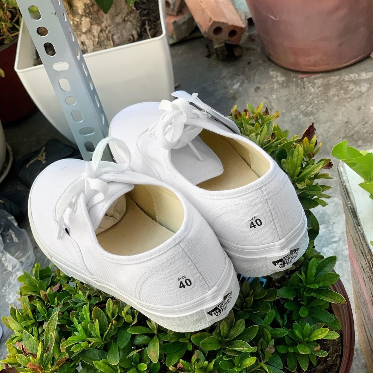 giày vans trắng 2