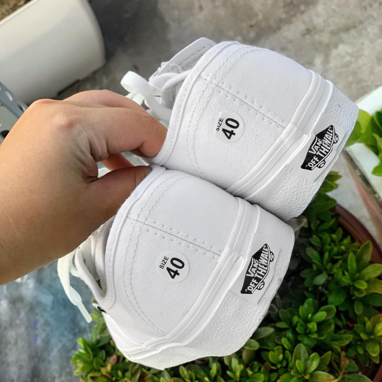 giày vans trắng 4