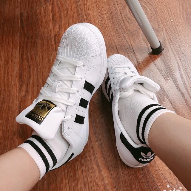 sỉ giày adidas giá rẻ